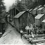 """Tiny Houses"" in the Redwoods a Century Ago"