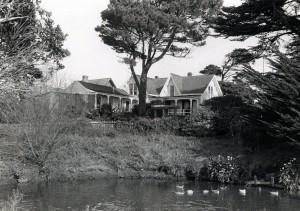 pond in 1984